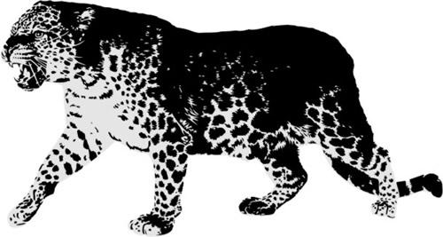 Animal Print Stencils | eBay